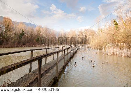 Old Wood Footbridge On Lagoon. Outdoor And Nature. Rural Panorama