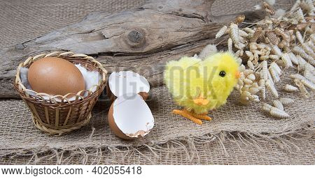 Toy Easter Chick Creacking From Eggshell On Wooden Background.  Chick Hatching From Cracked Chick Eg