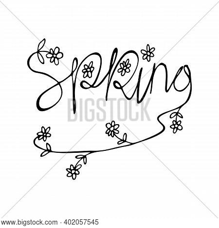 Spring Time. Flower Bloom, Garden Meadows Plants Background. Bridal Decoration, Isolated Floral Vect