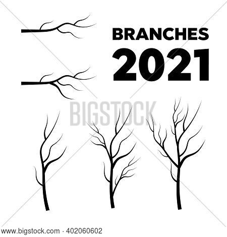 Leaves, Swirls And Floral Elements. Olive Branch. Vector Tree Branches Silhouette