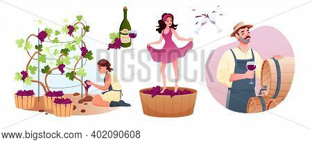 Wine Production In Traditional Winery. Cartoon Man Woman Characters Produce Natural Vine, Grow Organ