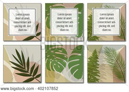 Multi-page Botanical Layout Template With Copy Space For Text Vector Illustration.