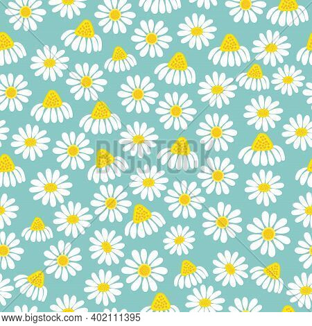Hand Drawn Common Lawn Daisy Flowers Vector Floral Seamless Pattern Design For Textile And Printing-