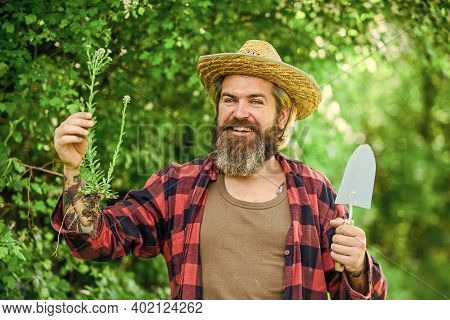Botanic Worker. Trowel Digging Soil. Garden Tools. Seeds And Soil. Spring In The Garden. Farmer Givi