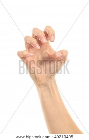 Woman Hand In Claw Gesture