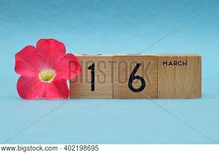 16 March On Wooden Blocks With A Petunia On A Blue Background