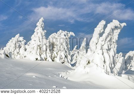Landscape On Brocken Mountain In Harz National Park,germany