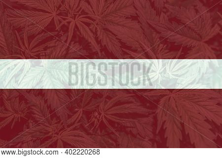 Cannabis Legalization In The Latvia. Medical Cannabis In The Latvia. Leaf Of Cannabis Marijuana On T