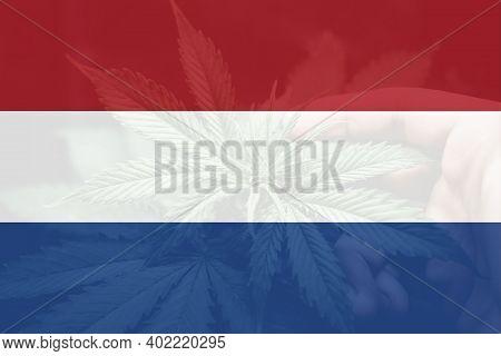 Weed Decriminalization In Netherlands. Cannabis Legalization In The Netherlands. Medical Cannabis In
