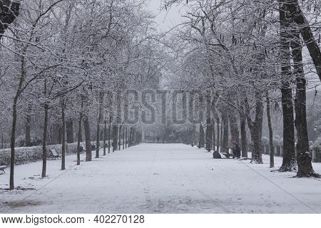 Madrid, Spain - January 07, 2021: General View Of One Of The Paths Of The Buen Retiro Park In Madrid