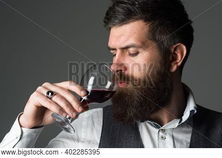 Bearded Man With Glass Of Wine. Tasting Alcohol. Red Wine. Bearded Man With Alcohol. Man In Suit Dri