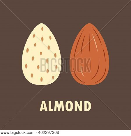 Peeled And Unpeeled Almond Isolated On Brown Background, Vector Illustration, Simple Flat Design