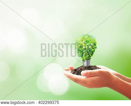 Earth Day Concept: Developer Hand Holding Light Bulb Of Growth Tree On Blurred Green Nature Backgrou