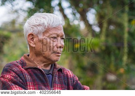 Portrait Of Elderly Man Arms Crossed And Looking Away While Standing In A Garden.