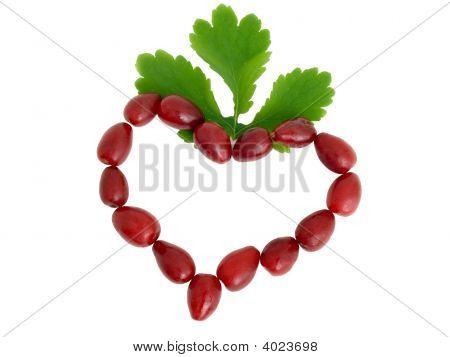Symbol Of Heart From Red Berries