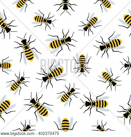 Seamless Pattern With Flying Wasps. Vector Cartoon Bees Isolated On White Background. Cute Bees Or W