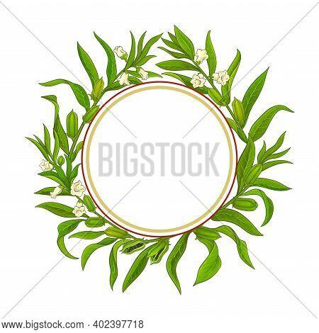 Sesame Plant Vector Frame On White Background