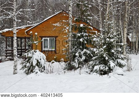 Wooden Country House In Winter, Frozen Trees At Snowfall, Russia