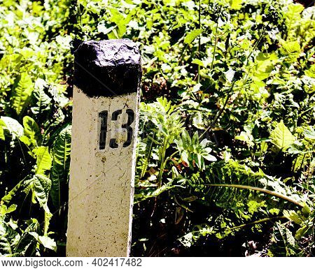 Railway Roadside Post. On The Pillar Number Thirteen. Close-up On A Background Of Green Grass.