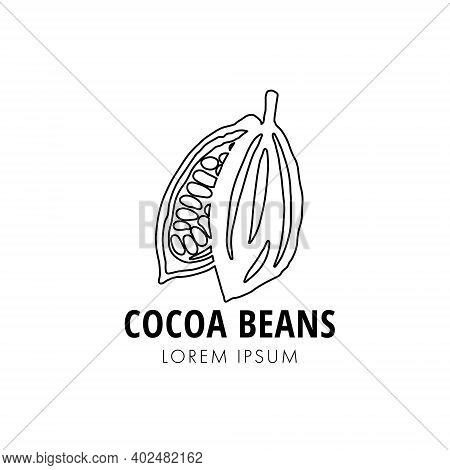 Halves Of Line Ripe Cocoa Pod With Beans On White Background. Organic Cocoa Beans Logo