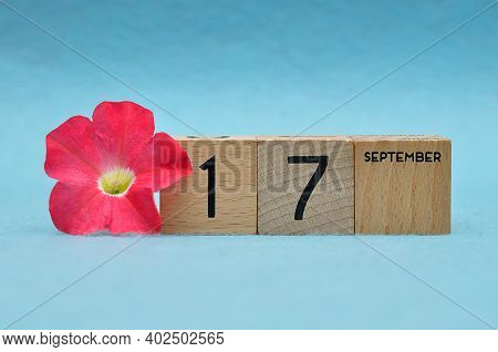 17 September On Wooden Blocks With A Petunia On A Blue Background