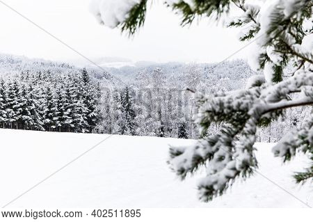 Snowy Winter Landscape With Forest In The Fog. Foggy Winter Morning. Winter Landscape In The Czech R