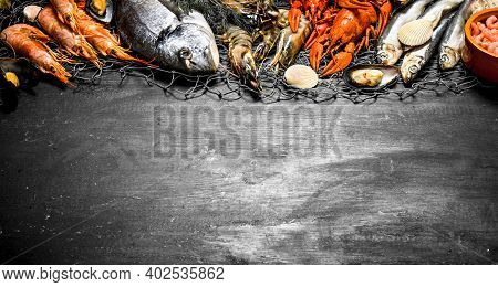 Fresh Seafood. Various Marine Shrimp, Shellfish And Lobsters At The Fishing Net. On A Black Chalkboa