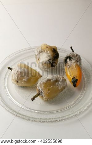 Rotten Peppers With Mold On A Glass Plate On A White Background. Spoiled Food. Food Waste Concept. C
