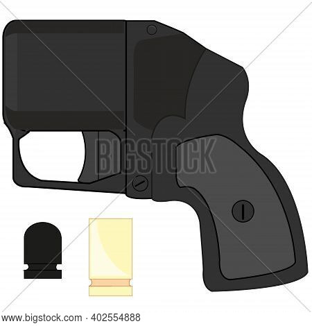 Traumatic Gun Wasp On White Background Is Insulated