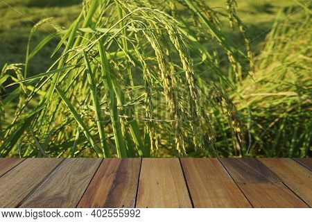 Empty Wooden Table On Rice Plants And Ears Of Rice Background. Mock Up For Your Product Display Or M