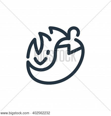 chilli icon isolated on white background. chilli icon thin line outline linear chilli symbol for log