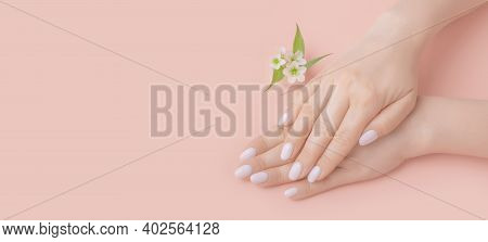 Close-up Beautiful Female Hands With Flowers On Pink Background. Concept Hand Care, Anti-wrinkles, A