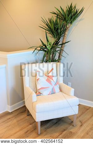 Chair Besides A Potted Plant On A Wooden Floor Taken Inside A Room At A Residential Home