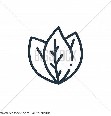 leaves icon isolated on white background. leaves icon thin line outline linear leaves symbol for log