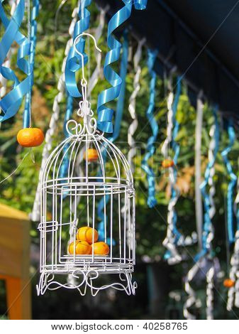 Tangerines In The Birdcage