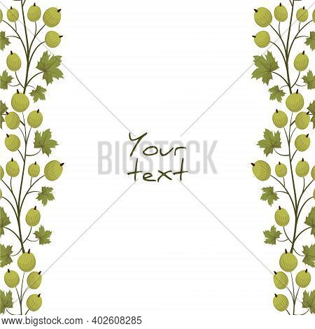 Vector Background With Gooseberry; Vertical Borders For Greeting Cards, Invitations, Posters, Banner