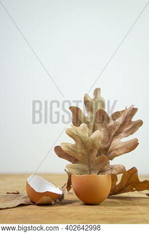 Autumn Leaves In An Eggshell. Dry Leaves Of An Oak Tree. Eggshell