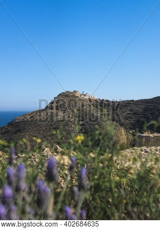 View To Whitewashed Lighthouse Behind Blurred Lavender Flowers In The Natural Park Serra Gelada In A