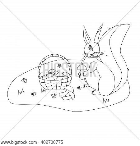 Coloring A Squirrel Sits In A Clearing Near A Basket Of Mushrooms And Holds A Mushroom In Its Paws,