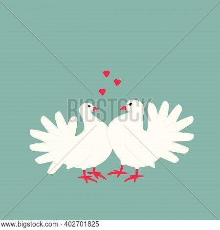 A Pair Of Doves Symbolizes Love And Devotion.  A Couple Of Pigeons Are Often Used At Weddings To Sym