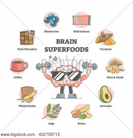 Brain Superfoods As Nutrition Diet Products To Improve Memory Outline Concept