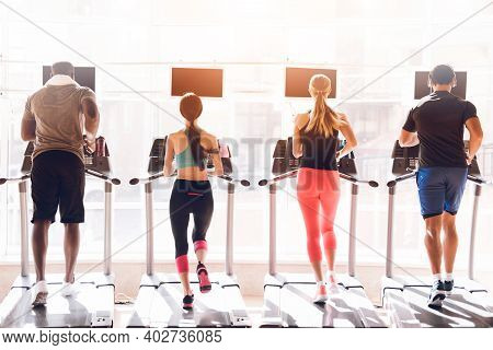 Athletes Engage In Modern Treadmills In The Bright Gym. In Front Of Them Is A Large Bright Window.