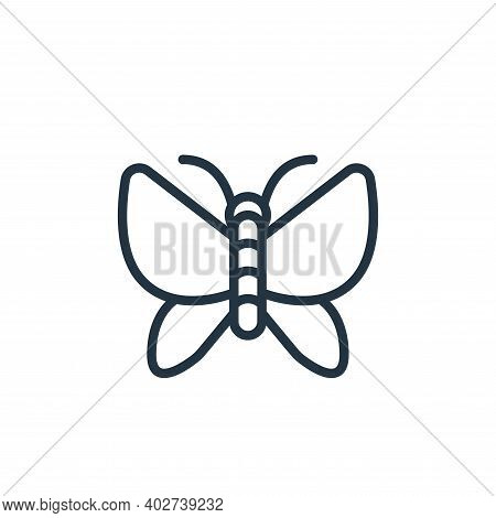 butterfly icon isolated on white background. butterfly icon thin line outline linear butterfly symbo