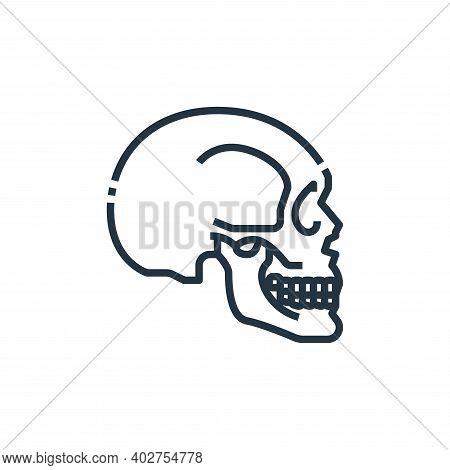 skull icon isolated on white background. skull icon thin line outline linear skull symbol for logo,