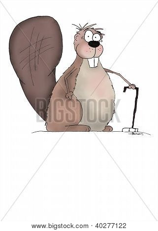 Cute Senior Beaver Cartoon Illustration