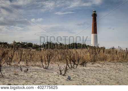 Barnegat Lighthouse, Nj, Surrounded By Sandy Beach And Golden Wild Grasses On A Brisk Winter Day Und