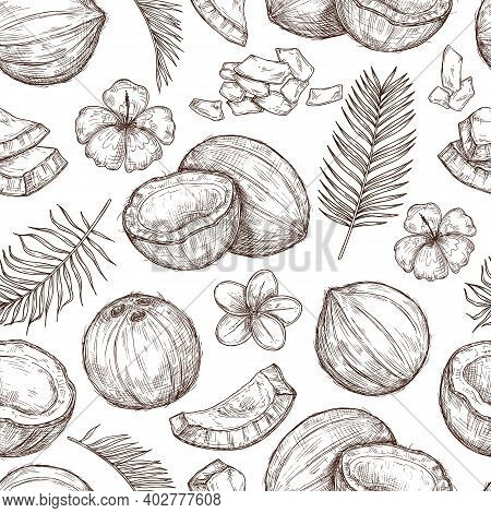 Coconut Seamless Pattern. Fresh Food, Tropical Leaf Flowers Print. Paradise Beach Coco, Drawing Hips