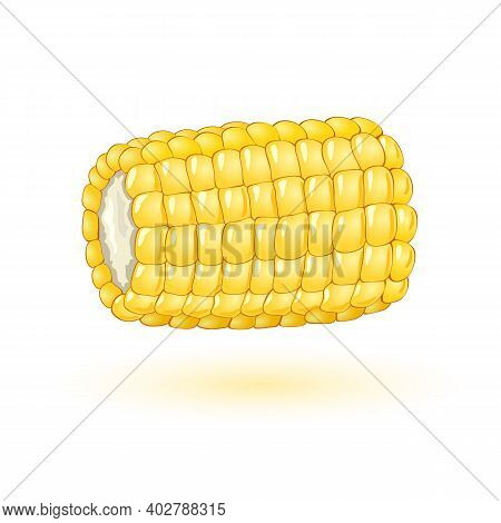 Part Of Maize Noggin, Small Yellow Vitaminized Grains, Organic And Healthy Snack. Vector Food, Cooki
