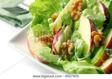 02819 Waldorf Salad