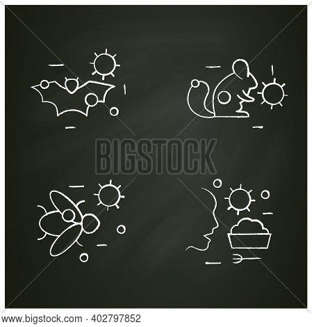 Disease Spread Concept Chalk Icons Set. Covid19, Virus Disease Mutation And Transmission. Virus Carr